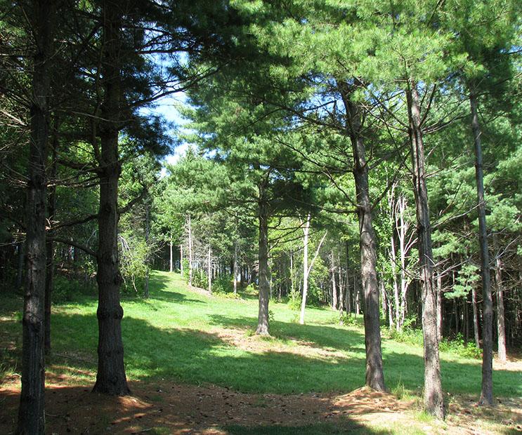 Hillcrest Farm Disc Golf Course - Short Tee, Hole #18