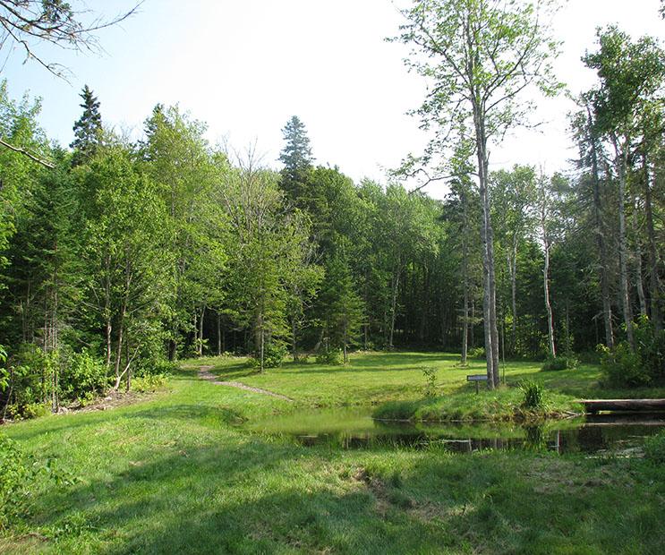 Hillcrest Farm Disc Golf Course - Short Tee, Hole #12