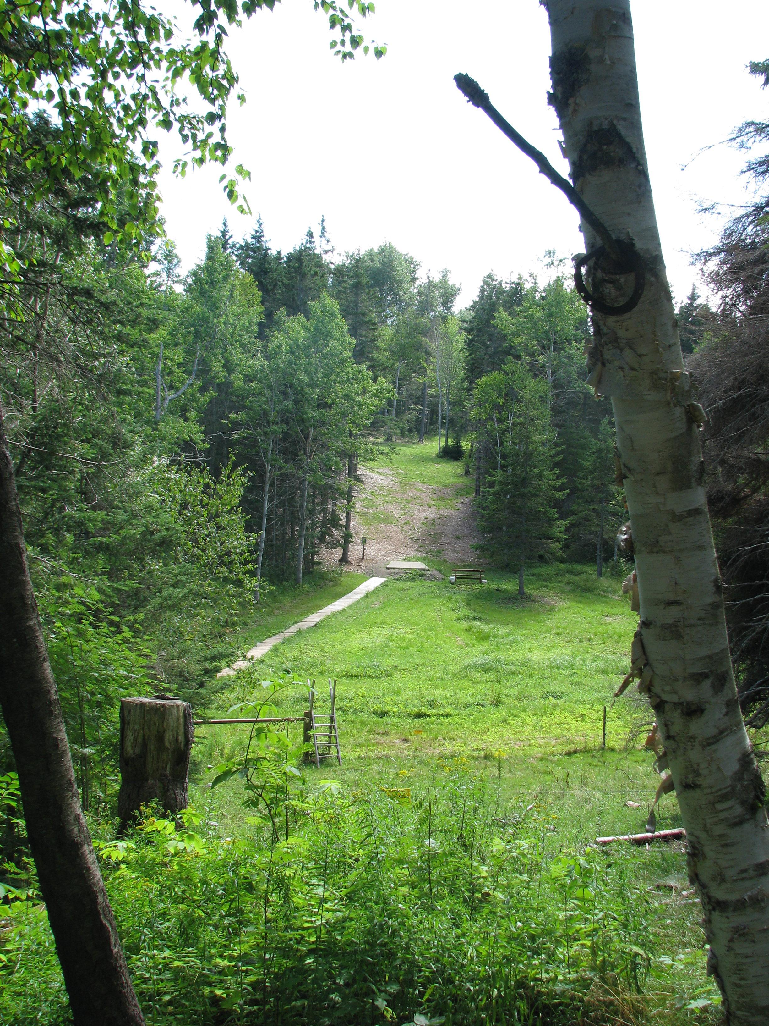 Hillcrest Farm Disc Golf Course - Long tee hole #2