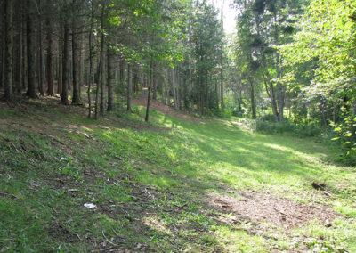 Hole 3 –The Poplars