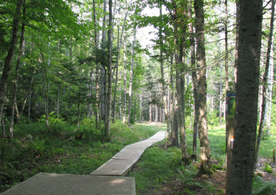 Hole 17 –The Birches