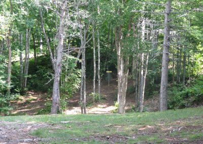 Hole 6 – Barred Owl