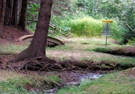 Link to Hillcrest Disc Golf Site